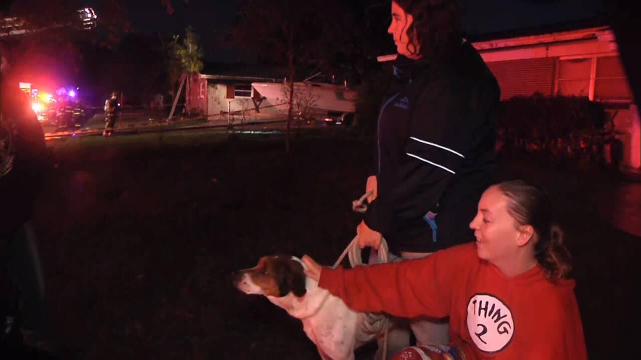 Hero dog in house fire near Eatonville