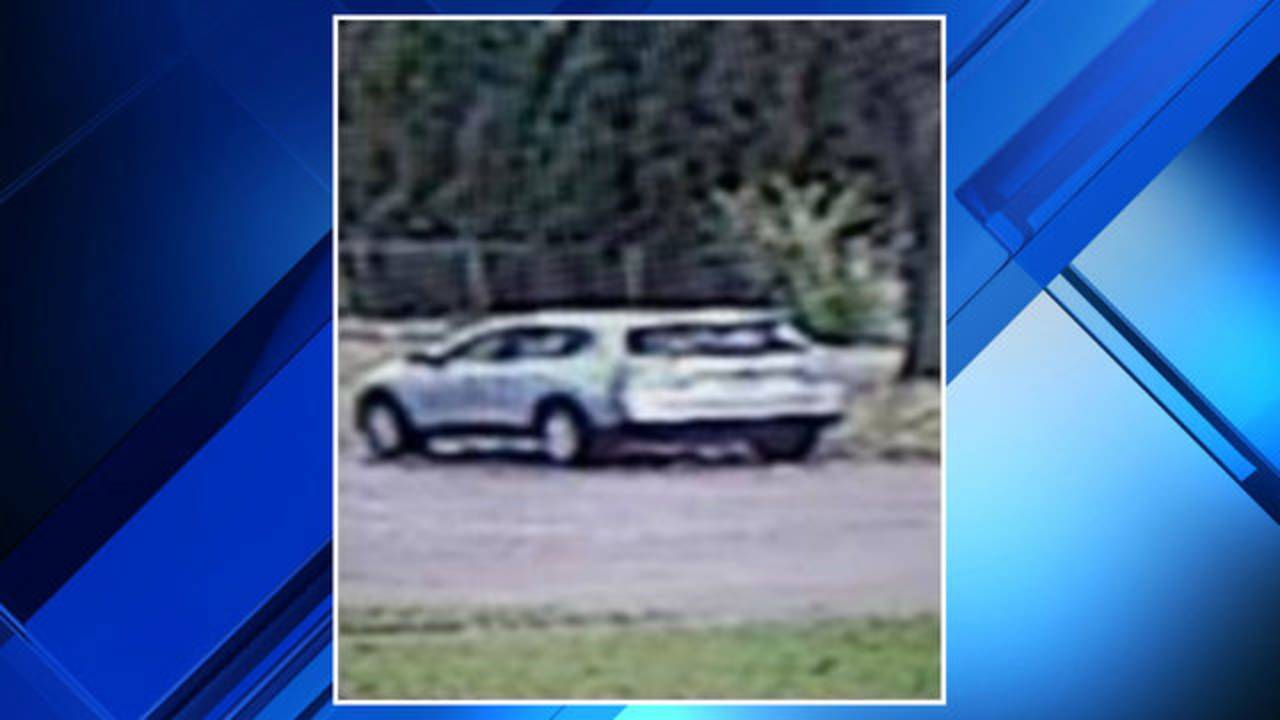 Dearborn Heights package thief SUV