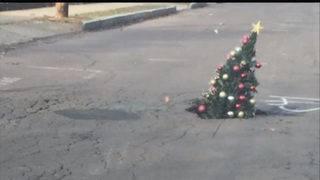 Christmas tree planted in Pennsylvania pothole