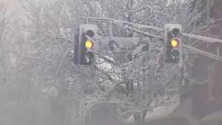 Is it really spring? 4th nor'easter in 3 weeks closes schools, delays flights