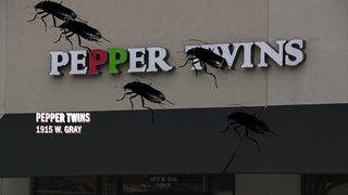 Restaurant Report Card: Rodent waste, roaches discovered by health officials