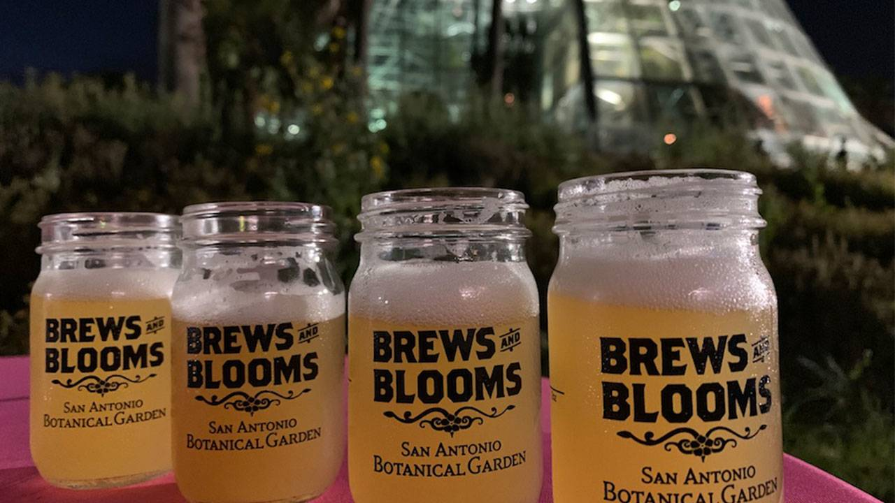 san-antonio-brews-and-blooms-sabot_1564415517876.jpg