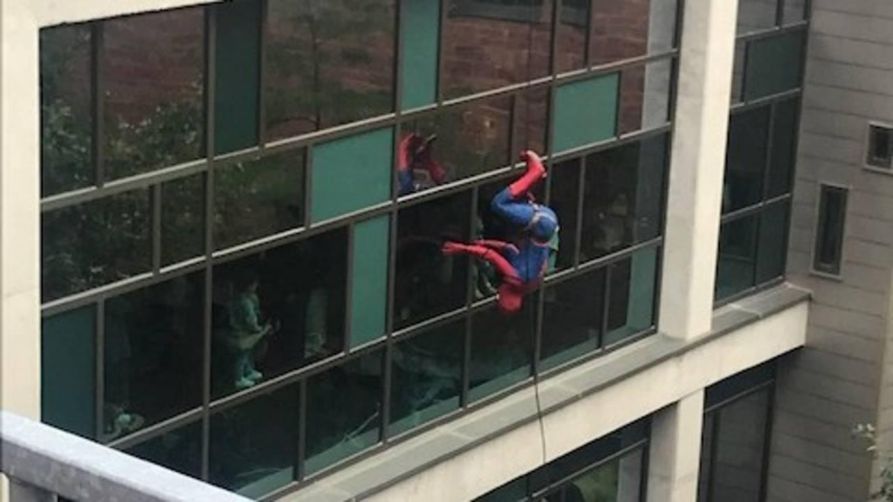 Spiderman_1559314859903.jpg