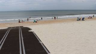 Here's why large black mats are showing up on Florida beaches