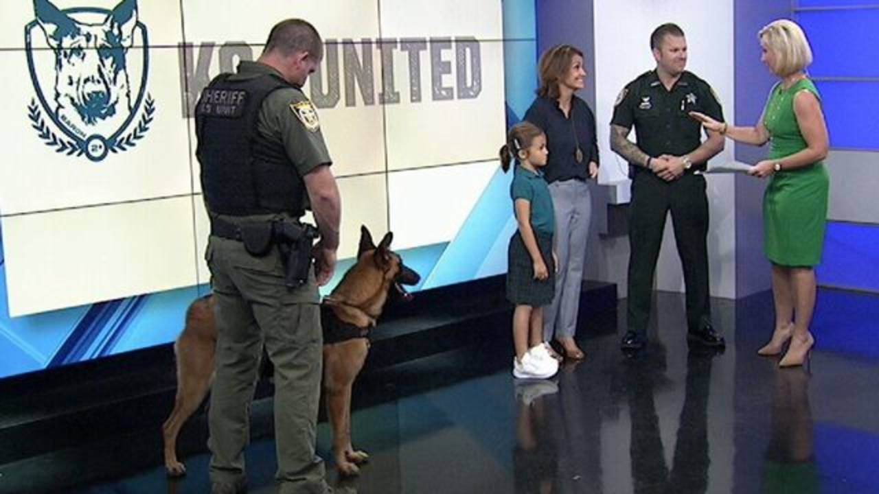 k9s united on tms