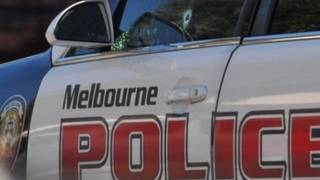 Dog attacks, severely mauls 4-year-old in Melbourne