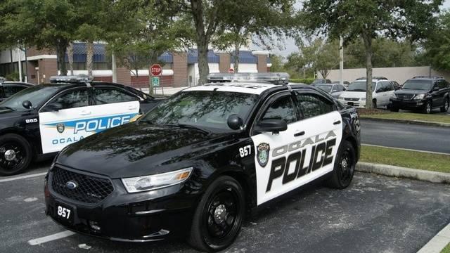 Department of motor vehicles ocala florida vehicle ideas for Florida state department of motor vehicles orlando fl