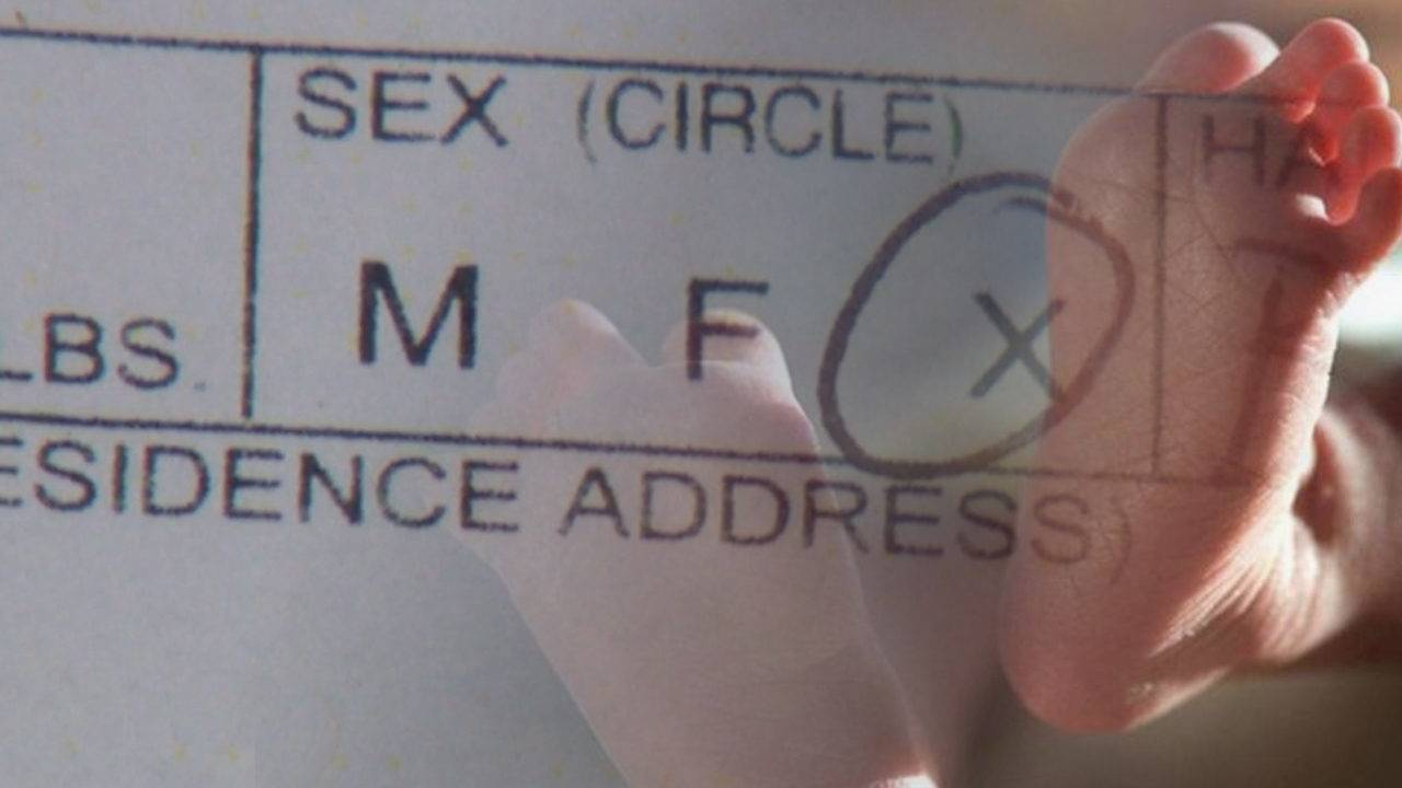 City Introduces Law Allowing Gender Neutral Birth Certificates