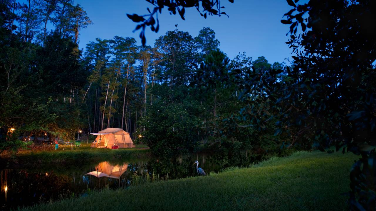 Fort Wilderness Campsites.jpg
