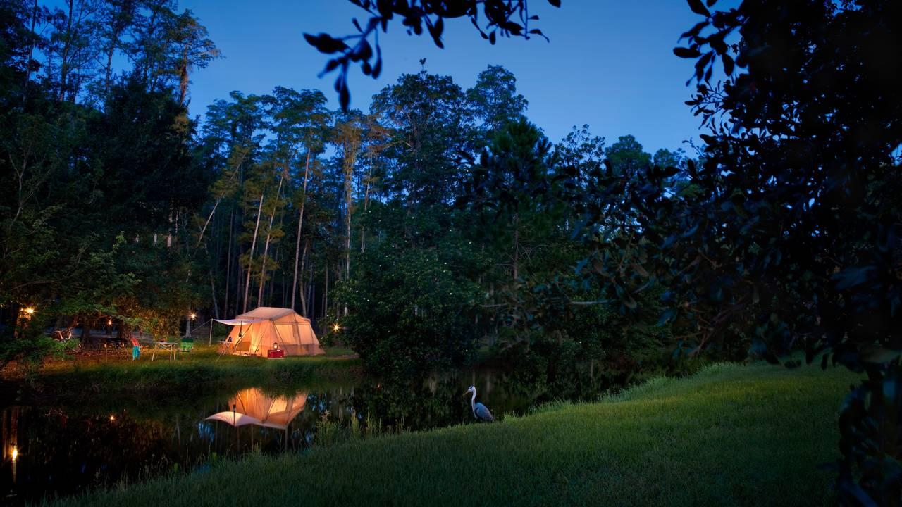 Fort Wilderness Campsites.jpg
