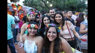 Thousands party downtown at NIOSA  (Gallery 2 of 2)