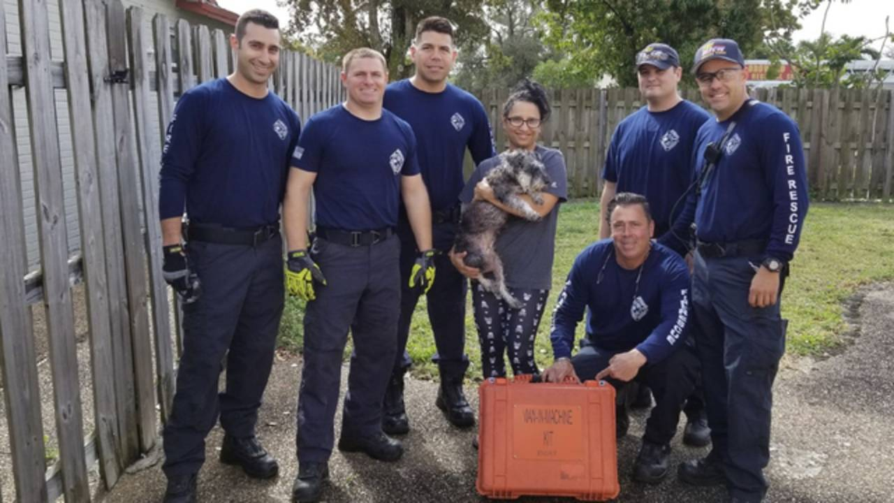 Dog saved from drain