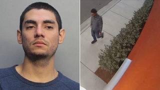 Miami-Dade man accused of mugging teen girl along Doral street