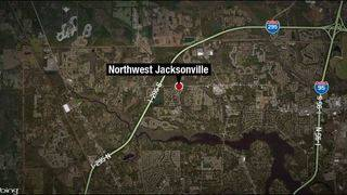 FHP: Man hit by SUV in critical condition