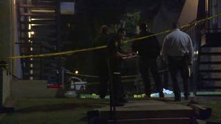 Robbery motive in NW Side double shooting, police say
