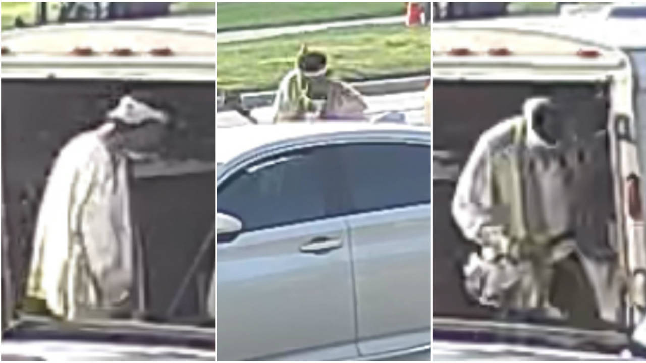 Roseville lawn equipment thieves images 1