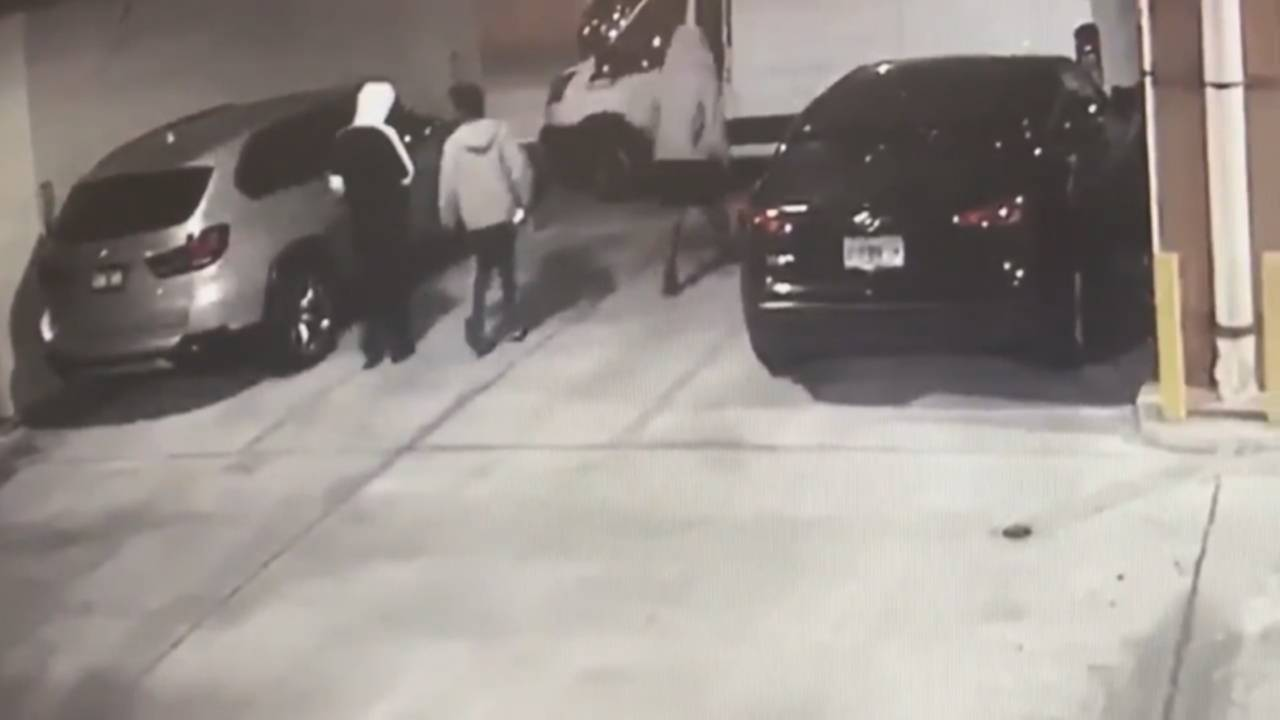 Thieves breaking into Miami van