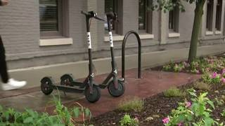 Important rules to know before using bird scooters in Ann Arbor