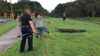 Man retrieving Frisbee attacked by 11-foot alligator