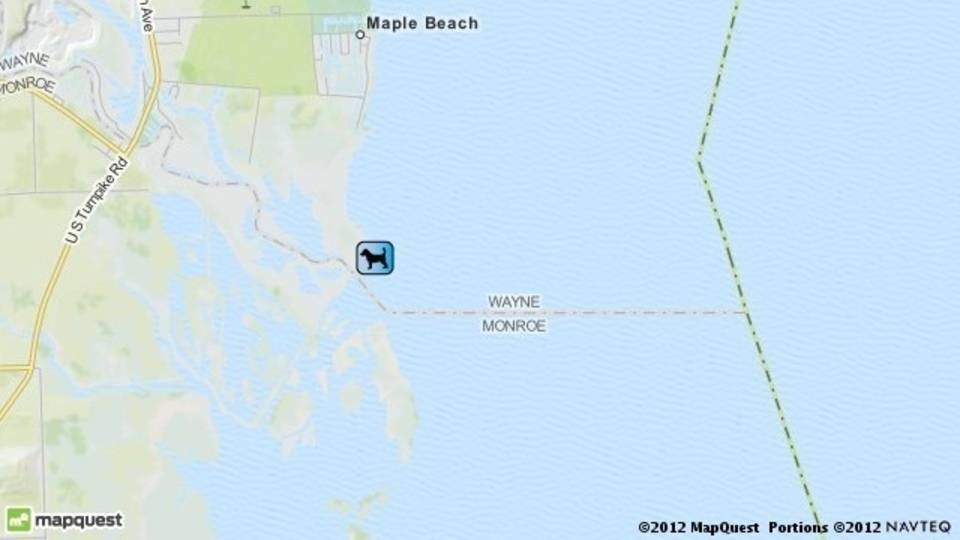 Dog rescue Lake Erie ice map_17917408