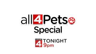 'All 4 Pets' Special – Tonight at 9 p.m. on Local 4