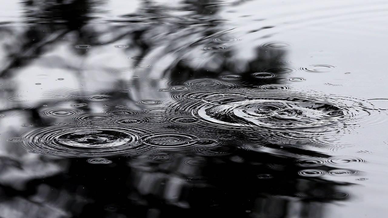 RainPuddle_1501441455756.jpg