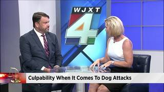 Dog bite victim spurs question of what's your legal rights