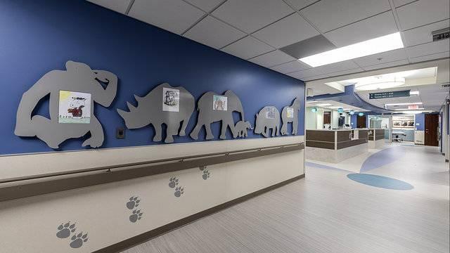 Beaumont Hospital Royal Oak opens new Pediatric Emergency Center 11_1531407345706.jpg.jpg
