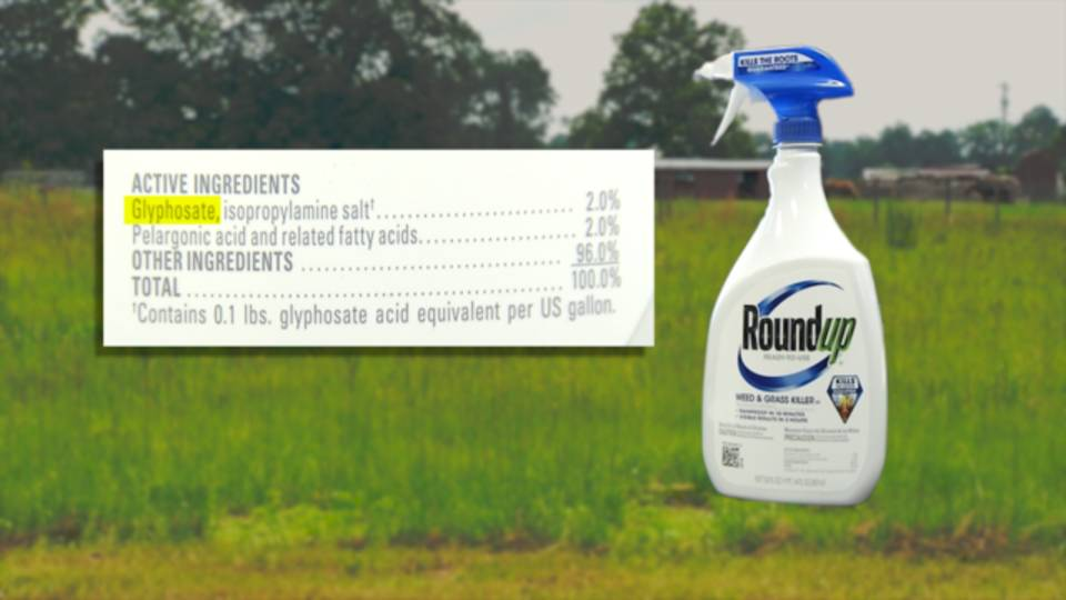 Roundup with Glyphosate