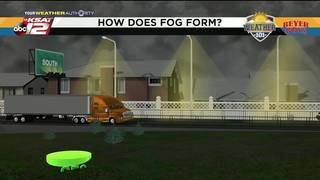 Weather 101: How Does Fog Form?