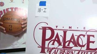 Palace of Auburn Hills collectibles for sale in online auction
