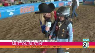 Mutton Bustin' Rodeo Clownin' Fun At The Junction