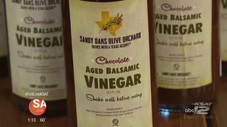 Big Adventure November: Sandy Oaks Olive Orchard