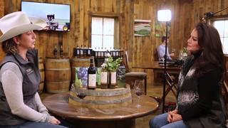 San Antonio Stock Show & Rodeo wine tips, tricks