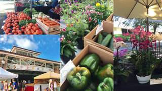 Shop local at these popular Orlando area farmers markets