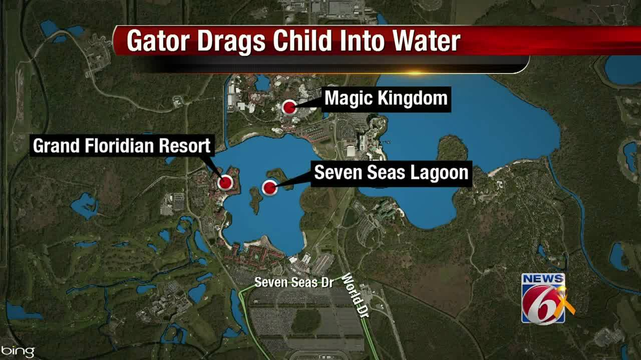 Gator drags child into water map