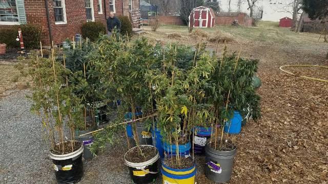 Giles County grow house 010318_1515001725891.jpg