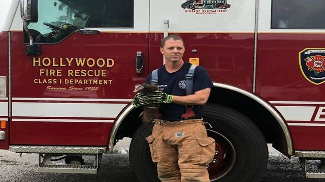 Duck with Hollywood firefighter