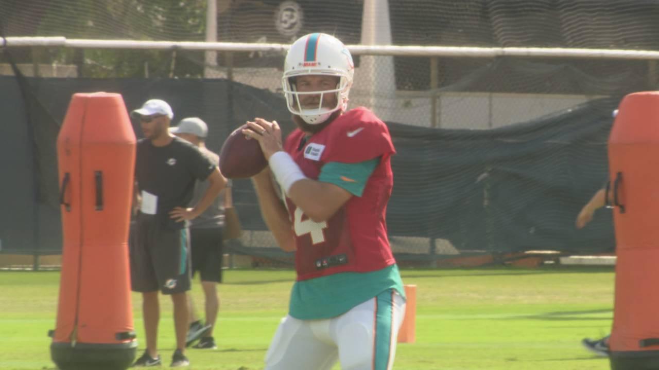 Miami Dolphins QB Ryan Fitzpatrick prepares to throw during training camp