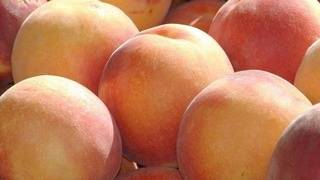 Fresh fruit recalled in multiple states due to listeria concerns