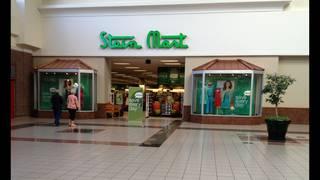 Stein Mart's price per-share plunges