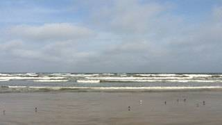 Check fecal bacteria levels at Texas beaches before heading out for spring break