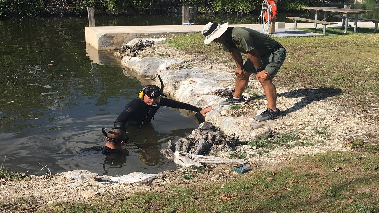 Dive team searching for gun in canal