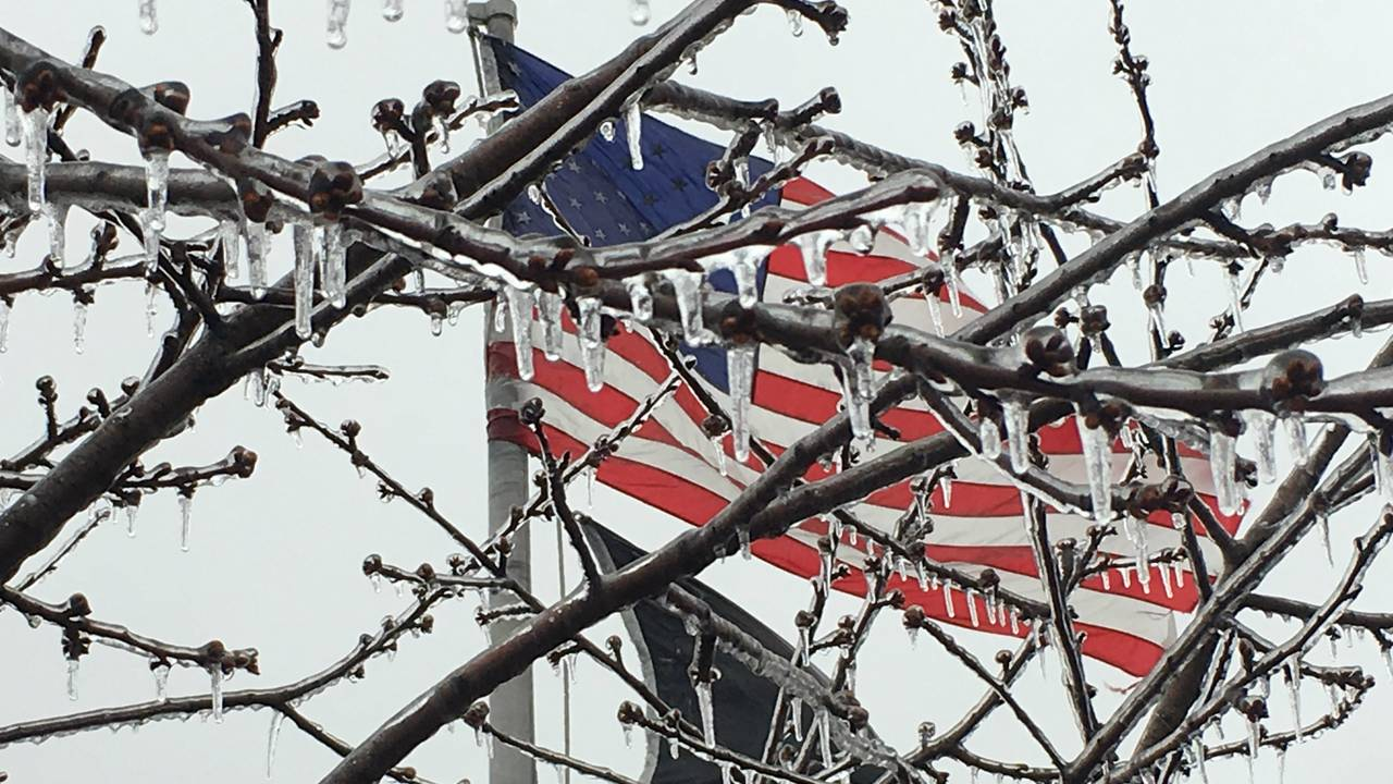 Ice on tree with American flag