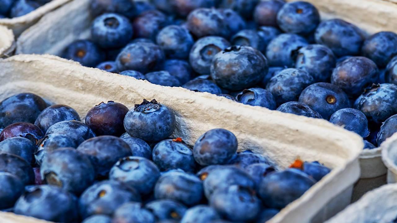 blueberries_1548103700035.jpg