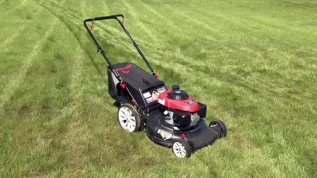 Lawn care do it yourself or hire out solutioingenieria Gallery