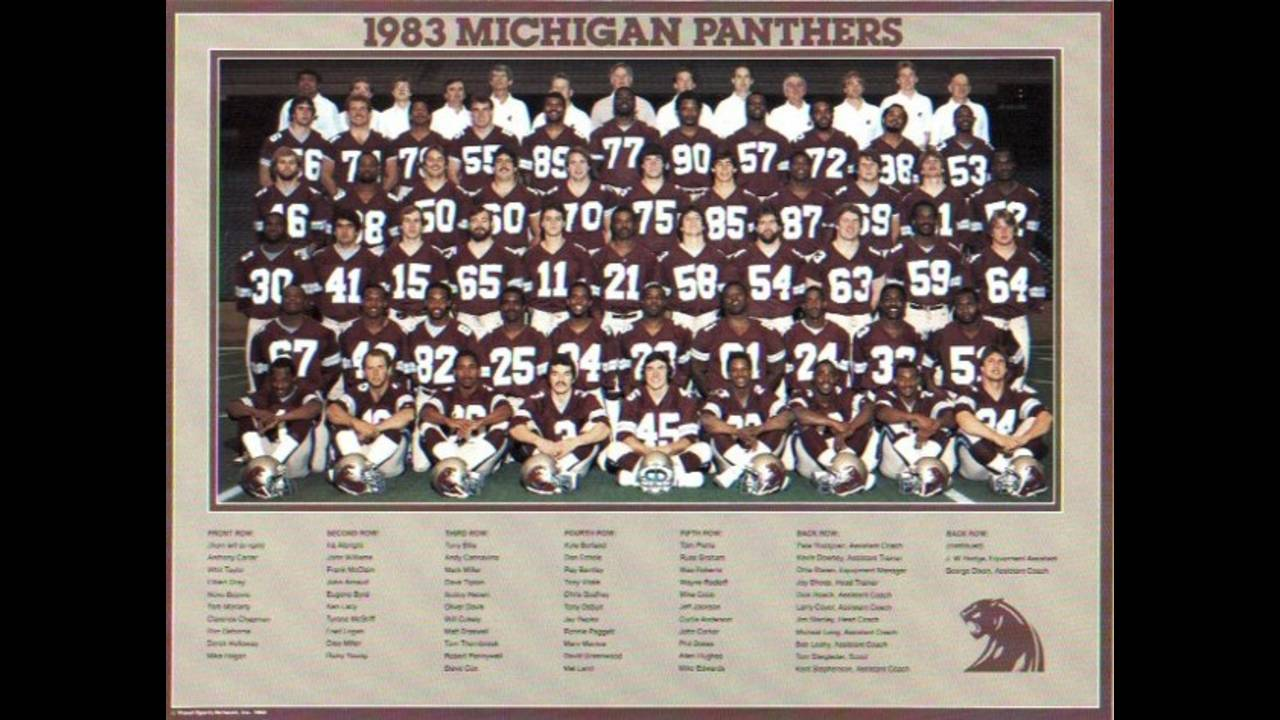 Michigan Panthers photo