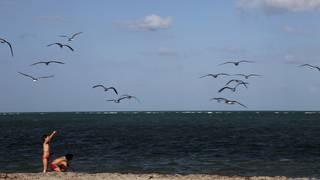 Swimming advisories issued for 4 Miami-Dade beaches, including South Beach