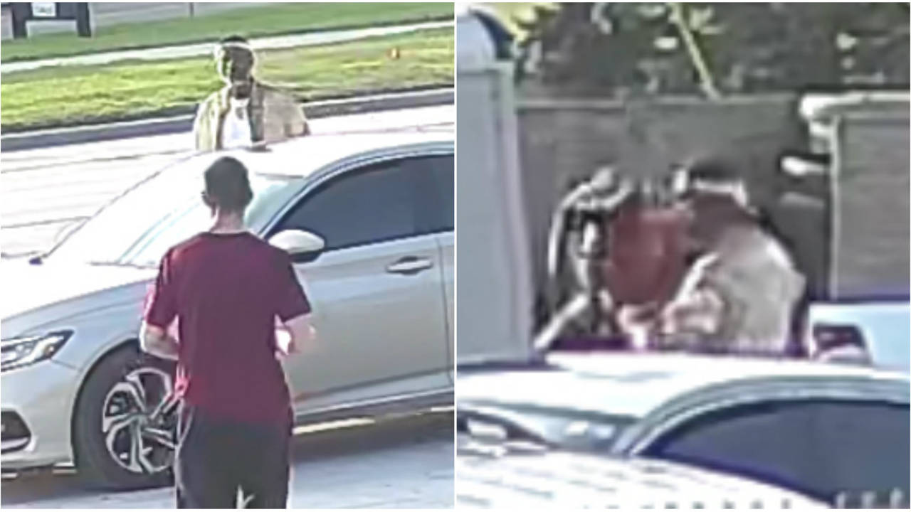 Roseville lawn equipment thieves images 3