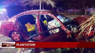 Firefighters rescue driver after crashing into tree in Plantation